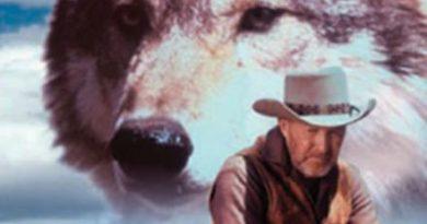 北美历史上最传奇的荒野狼王,一次唤醒无数人良知的凄烈死亡